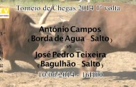 """Campeonato Chegas de Bois de Raça Barrosã – Sorteio """"aparelhou"""" bem os participantes – 2014"""