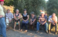 Associação Amigos de São Lourenço – Desfolhada – 2014