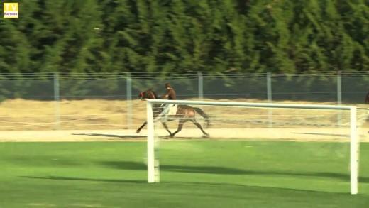 Corrida de cavalos – Sr. da Piedade – 2010
