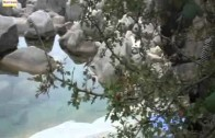 Rio Toco – Enviado por Henrique