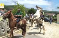 Desfile de cavalos em Gralhós 2016