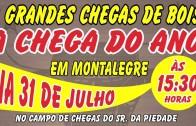 Campeonato de chegas – Continua… 2016